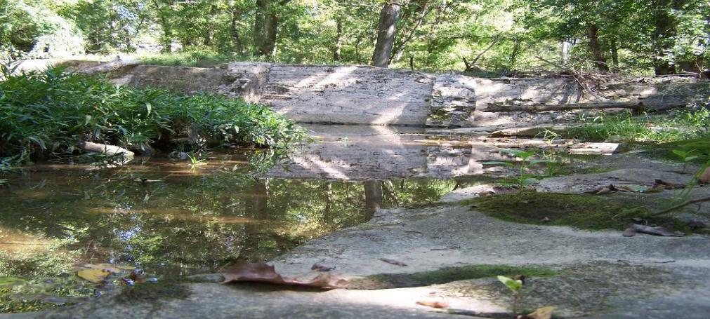 waterfall-1011x455